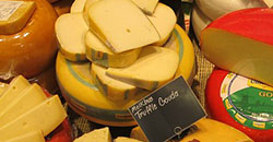Application: A PCR-DGGE method for theidentification of histamine-producing bacteria in cheese